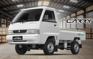 Suzuki carry pickup