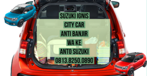 Suzuki Ignis City Car Anti Banjir 2020