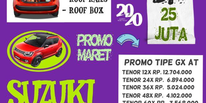 roof Box Suzuki Ignis